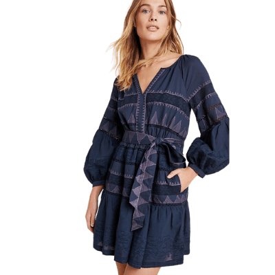 Anthropologie Skye Embroidered Mini Dress